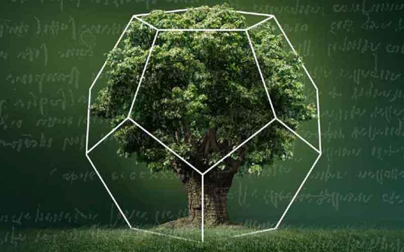 La botanica di Leonardo>
